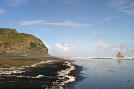Costa de Auckland e passeio de um dia na floresta tropical