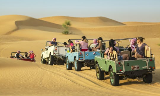 Falconeria Platinum Heritage e safari nella fauna selvatica a Dubai