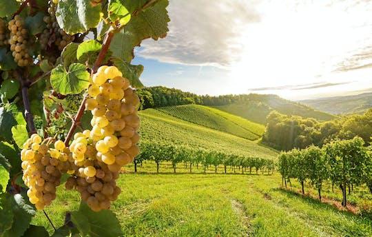 Dagtour met wijn uit Walachije met lunch