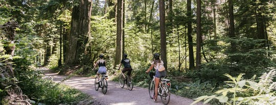 Vancouver Epic Electric cycling tour
