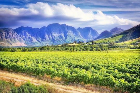 Tour de medio día a Babylonstoren desde Ciudad del Cabo