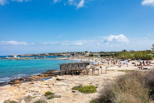 Visite privée de Formentera - Expérience ultime