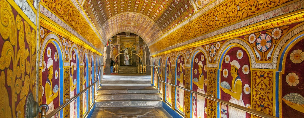 Kandy city, Temple of the Sacred Tooth Relic, and Royal Botanical Gardens tour