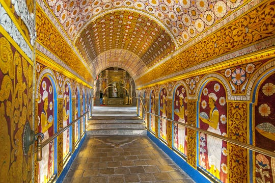 Храм Зуба Будды, Ботанического сада и города Канди обзорная экскурсия