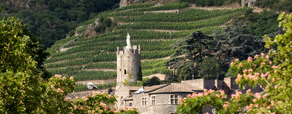 Full-day tour of the Northern Rhône Valley with tasting