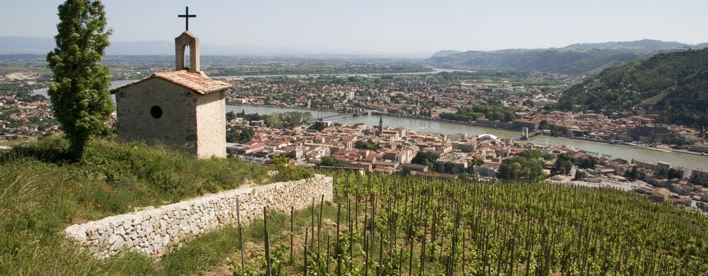 Small group cheese and wine tour in Northern Rhône