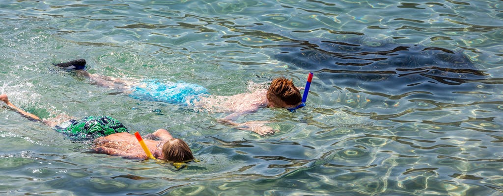 Boa Vista Snorkelling Tour