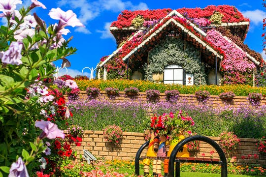 Miracle Garden, Global Village and Blue mosque Polish tour from Ras Al Khaimah