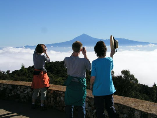 La Gomera - wędrówka przez las laurowy