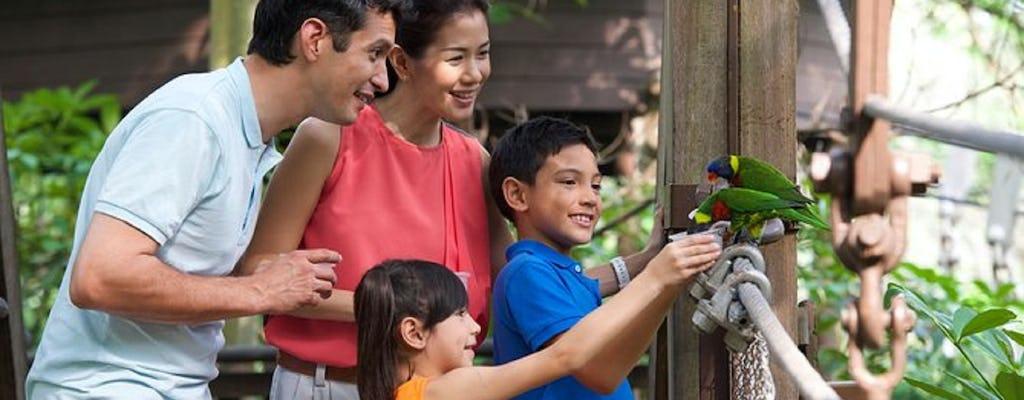 Tour privado em família pela natureza, pássaros e borboletas