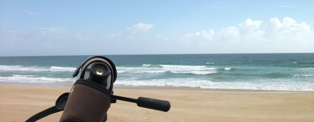 Excursion d'observation des oiseaux dans les dunes d'Alvor