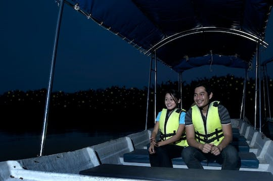 Kuala Selangor Firefly Blinking private tour with seafood dinner