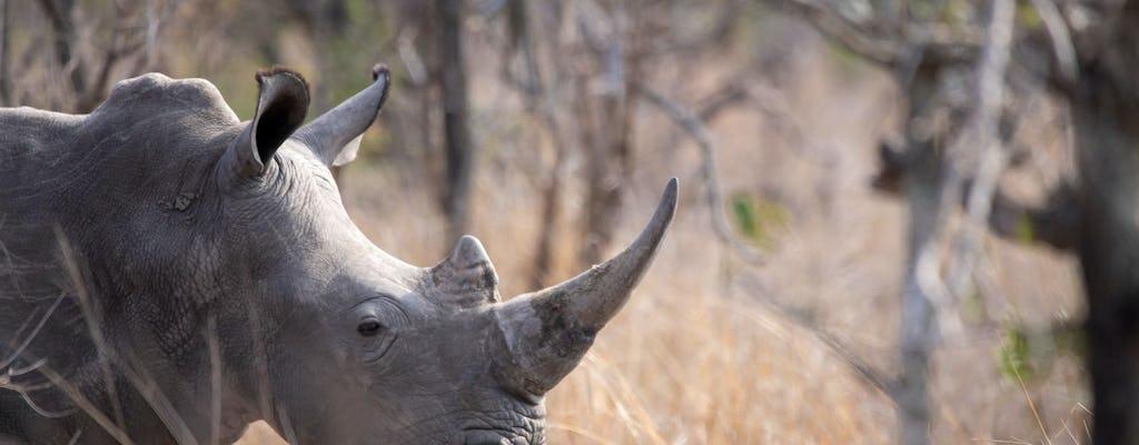 Национальный парк Крюгера однодневный тур из Йоханнесбурга