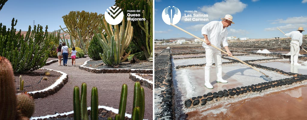 Tickets for Del Carmen Saltworks Museum and Majorero Cheese Museum