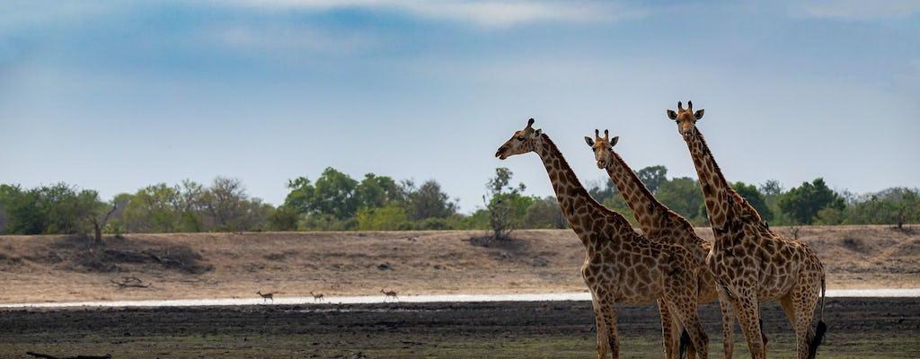 Kruger National Park full-day tour from Pretoria