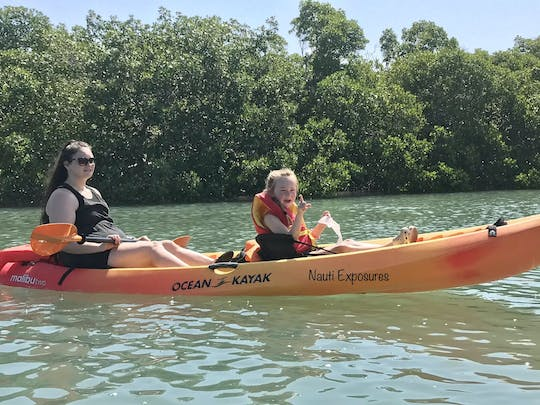 Kayak tour in Cocohatchee River-Wiggins Pass
