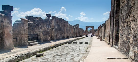 E-bike tour of Naples and guided visit of Pompeii ruins