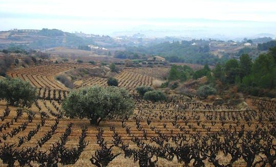 Пенедес экскурсия по винодельне 4х4