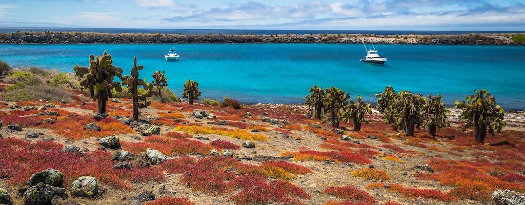 Plaza Island i Carrion Point całodniowa wycieczka z nurkowaniem