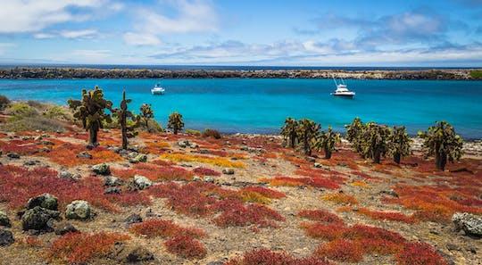 Dagtour naar Plaza Island en Carrion Point met snorkelen