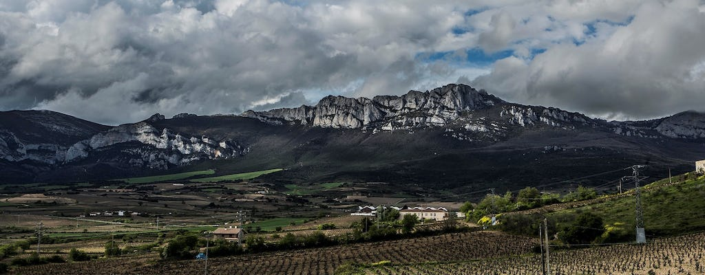 Winery visit in La Rioja with tasting and lunch from Vitoria