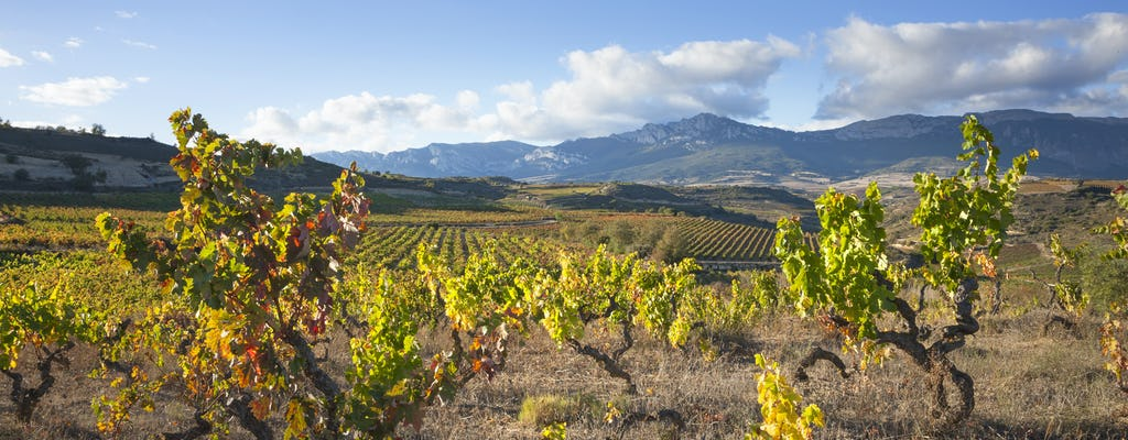 Wizyta w dwóch winiarniach w La Rioja z pintxos z Vitorii