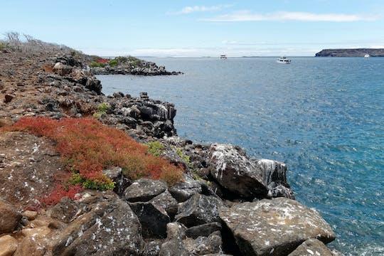 Excursão de dia inteiro à Ilha Seymour North e Las Bachas com almoço