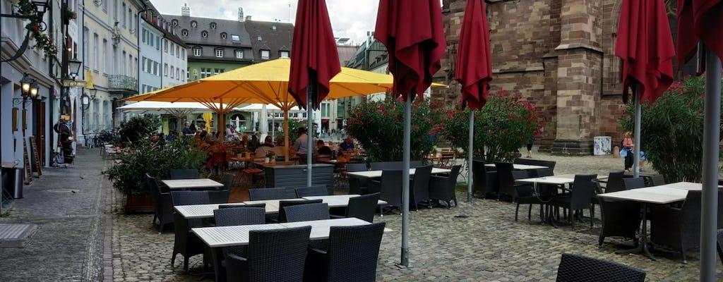 Tour privado por la ciudad de Friburgo