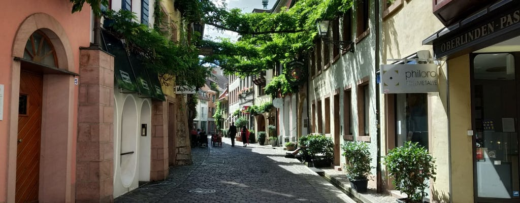 Private walking tour of Freiburg for families