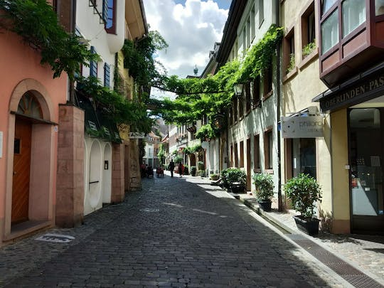 Private walking tour of Freiburg for families