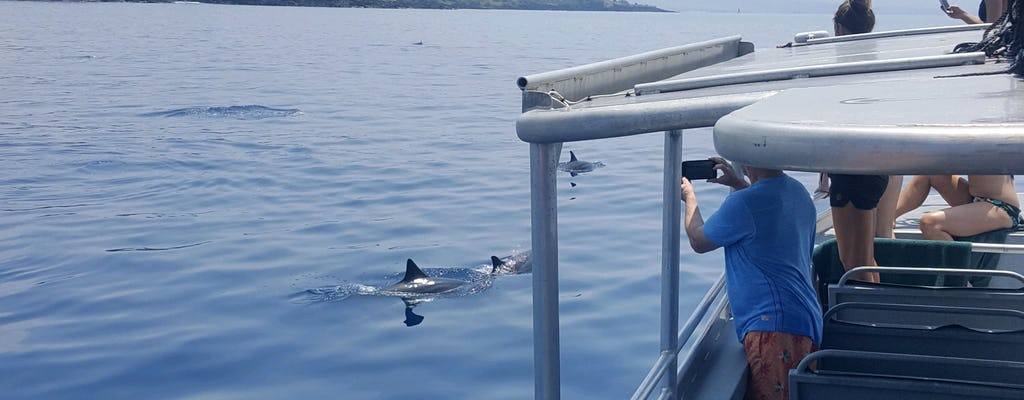 Dolphin sightseeing and snorkel cruise in West Oahu