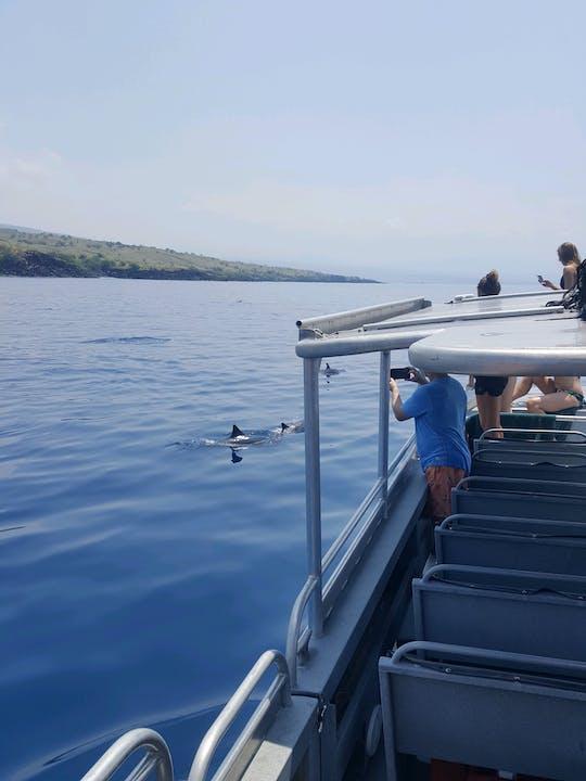 Visite des dauphins et croisière avec tuba dans l'ouest d'Oahu