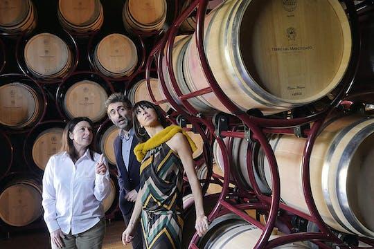 Degustação de vinhos clássicos na vinícola Terre del Marchesato