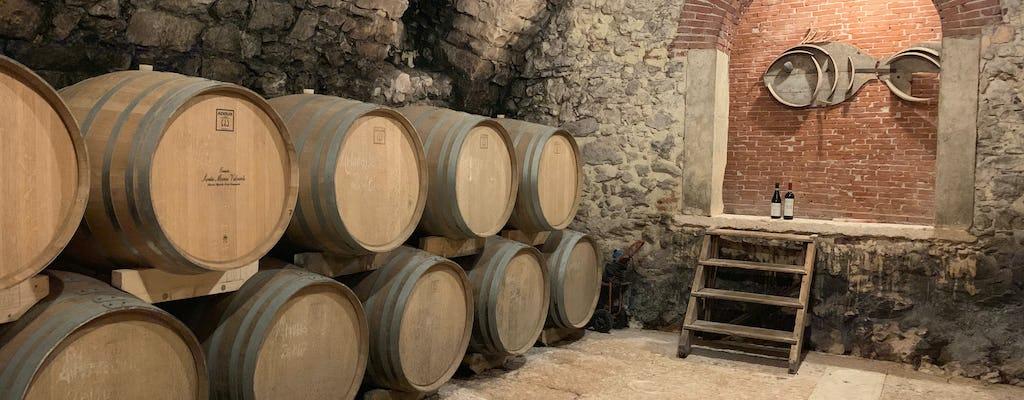 Valpolicella private tour with olive oil tasting