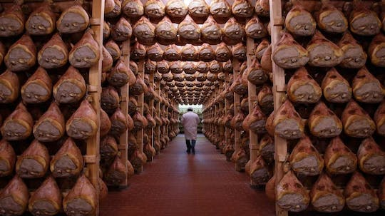Parma food excellence tour from Bologna