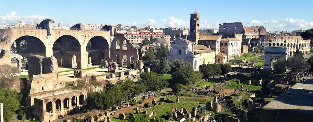 Complete tour of Rome with luxury transfers, Vatican, Colosseum, and fountains