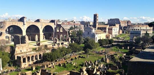 Passeio completo por Roma com transfers de luxo, Vaticano, Coliseu e fontes