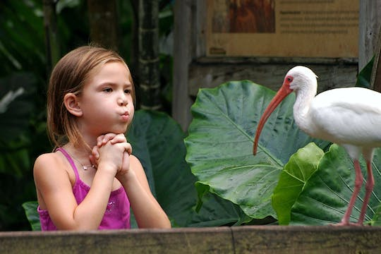 Flamingo Gardens admission ticket