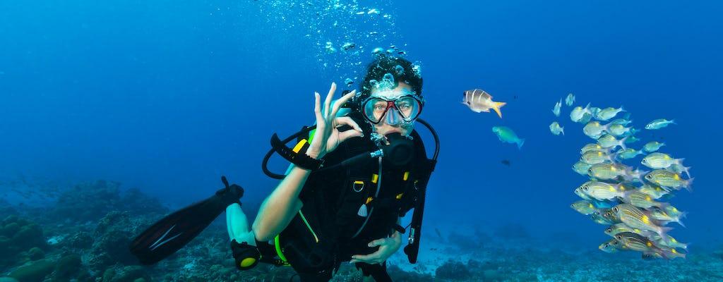 Expérience de plongeurs avancés à Charm el-Cheikh