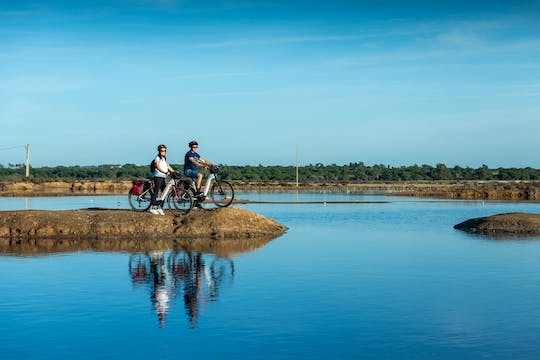 Faro and Ria Formosa bike tour