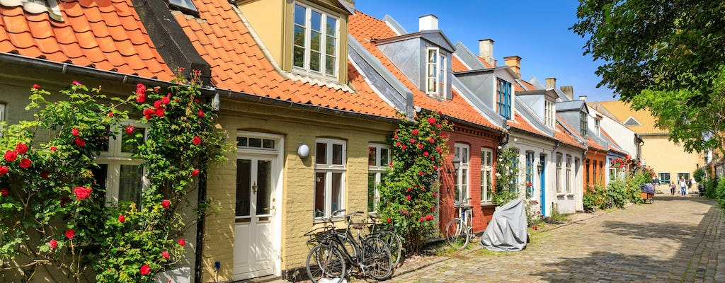 Introductory walking tour of Aarhus with a local