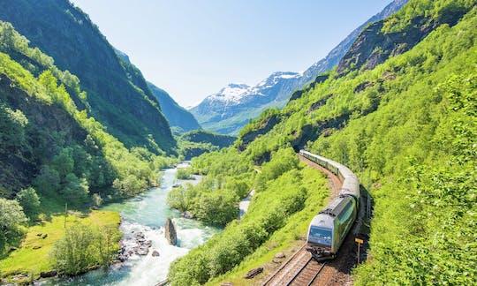 Wycieczka z przewodnikiem po Bergen z rejsem Sognefjorden i koleją Flåm
