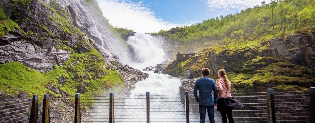 Selbstgeführte Tour nach Oslo mit einer Premium-Kreuzfahrt auf dem Nærøyfjord und der Flåmbahn