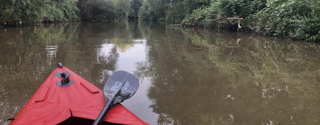 Guided kayak tour on the Neckar near Ladenburg
