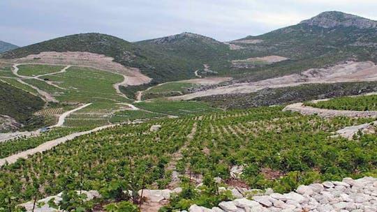 Private Tour von Dubrovnik nach Peljesac und Ston mit Weinprobe
