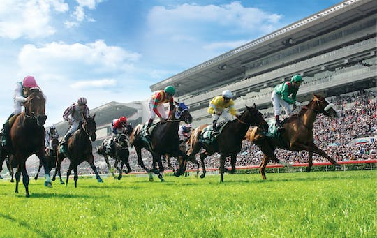 Happy Valley Horse Racing with a Private Walking Tour