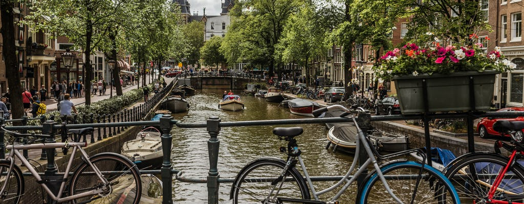 Full-day private Amsterdam walking tour with a local guide - 100% Personalized