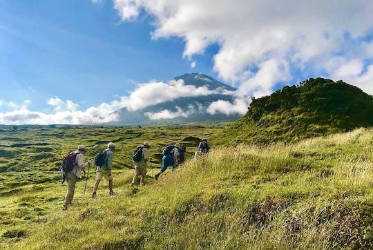 Half-Day Caldeira Walking Tour in Faial