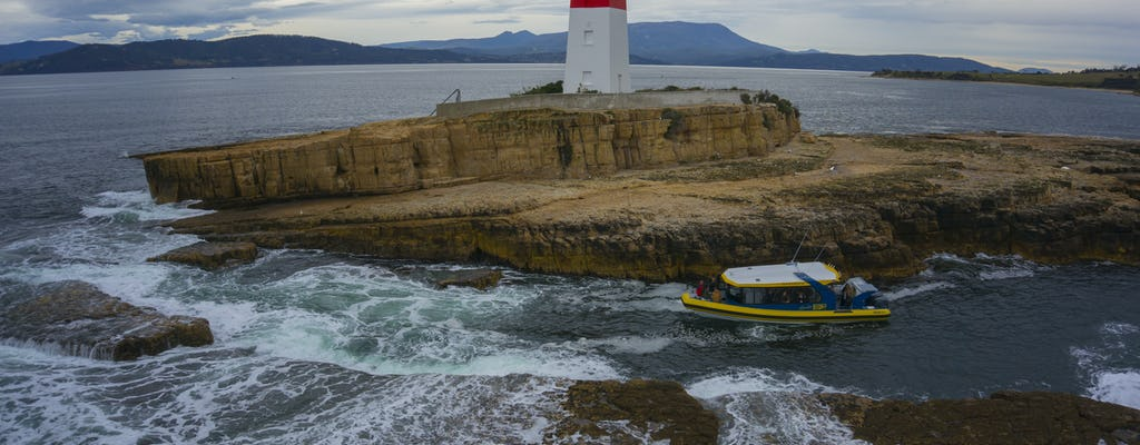 2.5-hour Iron Pot lighthouse cruise