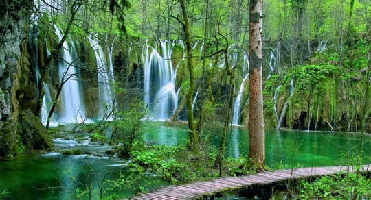 Private day-tour to Plitvice National Park from Zadar